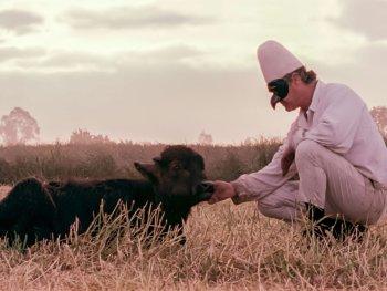 Filmszene aus Filmplakat zu BELLA E PERDUTA - EINE REISE DURCH ITALIEN