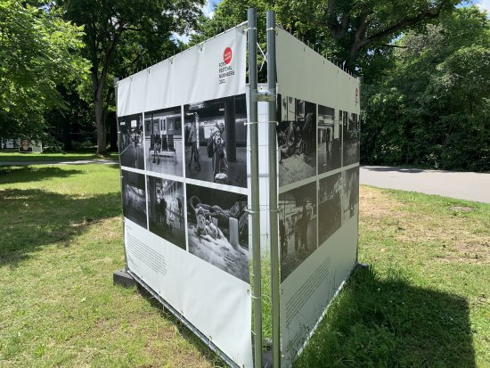 Fotofestival Nürnberg 2021 - facing reality