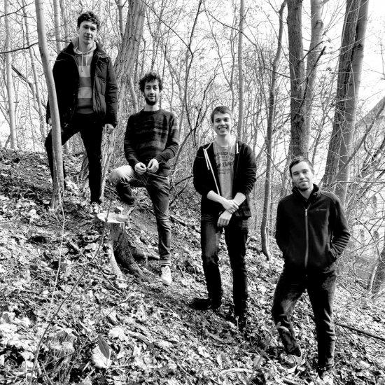 schwarzweiß-Aufnahme der vier Musiker im Wald