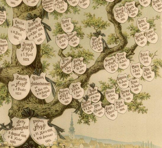 Stammbaum der Familie Löb Hopf von 1897